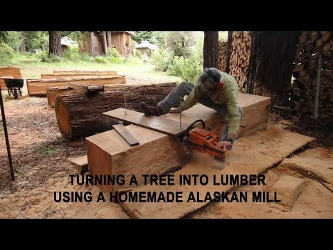Xxx Mp4 Turning A Tree Into Lumber Using A Homemade Alaskan Mill 3gp Sex