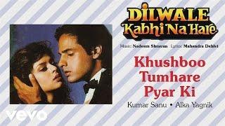 Official Audio Song | Dilwale Kabhi Na Hare | Alka Yagnik|Nadeem Shravan
