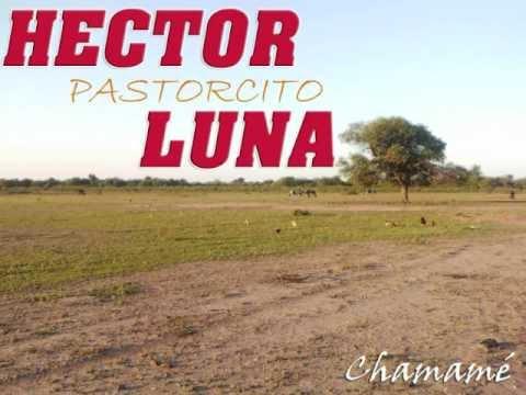 Hector pastorcito Luna en vivo