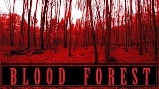 Blood Forest (2017) [Short Horror Film] [Amateur]