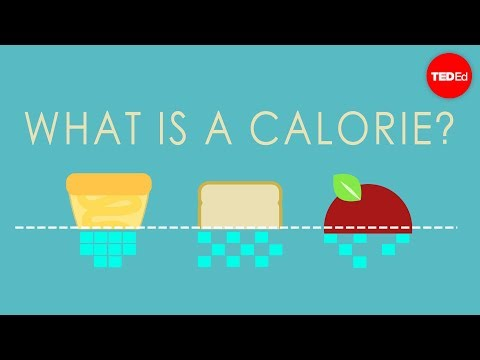 What is a calorie? - Emma Bryce