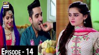 Zindaan - Ep 14 - 9th May 2017 - ARY Digital Drama