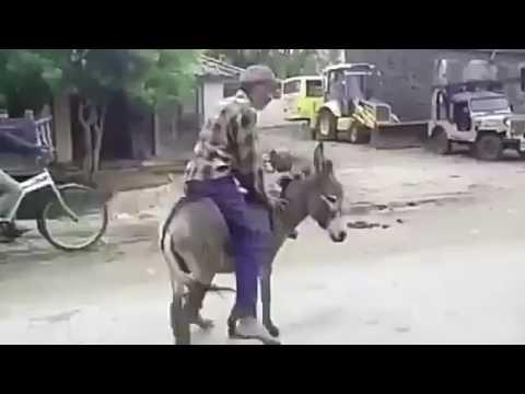Xxx Mp4 Tohar Mot Hamar Chhot Dukhata Jija 3gp Sex