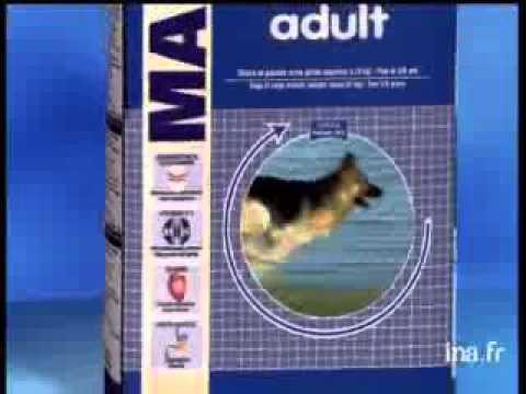 Xxx Mp4 Maxi Adult Video Royal Canin Max 3gp Sex
