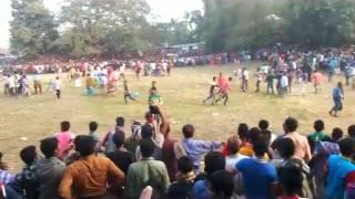 cow run  গরু দৌড় প্রতিযোগিতা দেখুন মজা পাবেন 100%