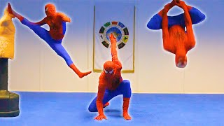 Taekwondo Spiderman | Flips & Kicks