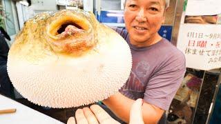 Japanese Street Food Tour in Osaka, Japan - DEADLY PUFFERFISH Sashimi (FUGU) + Noodle Tour of Osaka!
