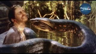 धरती पर दोबारा पैदा होगा ये सांप  Titanoboa, the World's Biggest Prehistoric Snake  Titanoboa Facts