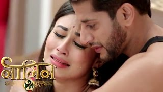 NAAGIN 2- 29th April 2017 | Latest Upcoming Twist | NAAGIN Season 2 Colorstv