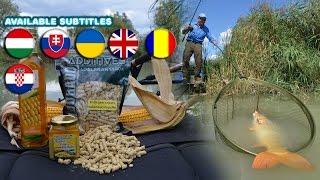 Döme Gábor  - Kukoricás praktikák a modern pontyhorgászatban