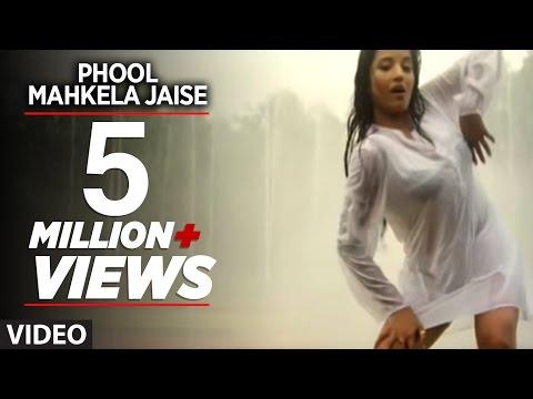 Phool Mahkela Jaise (Full Bhojpuri Hot Video Song)Feat.Hot & Sexy Monalisa