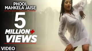 Phool Mahkela Jaise (Full Bhojpuri Hot Video Song)Feat.Hot & Sexy Monalisa