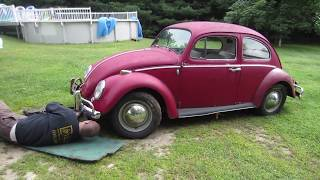 1966 vw bug find. can we get it to run?