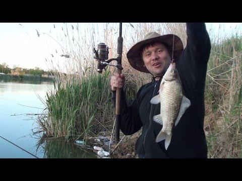 рыбалка кадуй канал