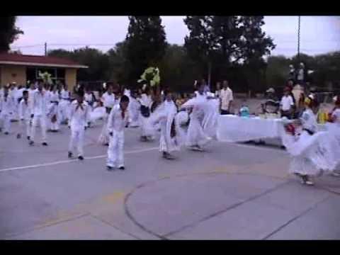Grupo infantil de danza. El tilingo lingo Veracruz.