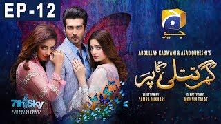 Ghar Titli Ka Par Episode 12   Har Pal Geo