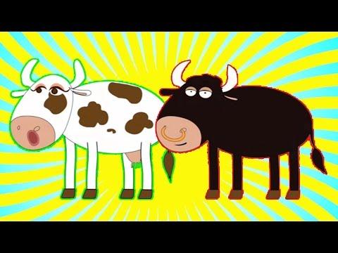 Xxx Mp4 Señora Vaca Sr Toro Y Muchas Más Canciones Infantiles ¡44 Min De Lunacreciente 3gp Sex