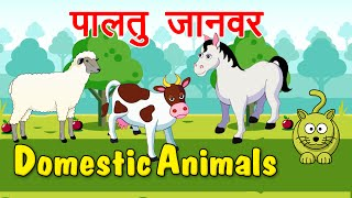 Learn Domestic Animals | Animated Video For Kids | Hindi Animation Video For Children