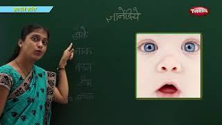 Body parts in Marathi   Learn Marathi For Kids   Marathi For Beginners