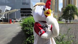 Chicky Movie Trailer- KFC Panamá