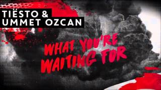 Tiësto & Ummet Ozcan - What You're Waiting For (Original Mix)