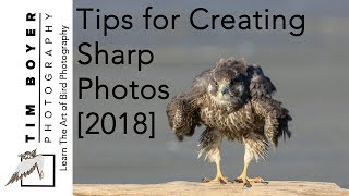 Tips For Creating Sharp Photos [2018]
