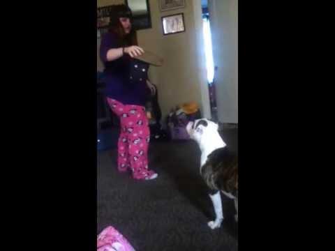 Girl vs dog MUST WATCH
