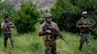 Opium trade fueling the Taliban