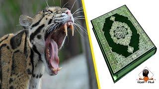 اكتشاف عن الحيوانات المفترسة اذهل العلماء وذكره القران بالتفصيل