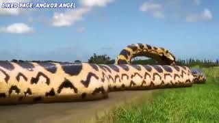 Pirahna giant snake  movie review