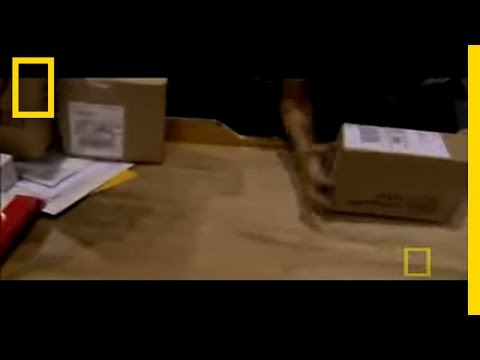 Inside UPS | National Geographic