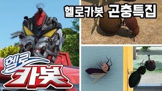 헬로카봇 ★ 곤충 특집 ★ Hello Carbot