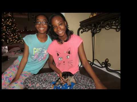 Christmas 2016: The twins get a puppy (St. Brees)