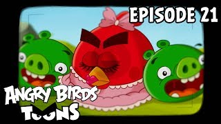 Angry Birds Toons | Hypno Pigs - S1 Ep21