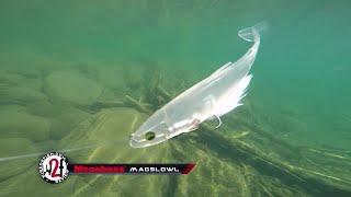 2016 Megabass New Release Fishing Lures Underwater