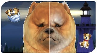 THE SIMS 4   BIRTH TO DEATH - DOG EDITION
