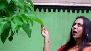 akash meghe dhaka shaon dhara jhore -- mimi