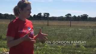 Hell's Kitchen Season 14 winner Meghan Gill on Gordon Ramsay