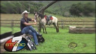 BANDA 100 PAREA Vaqueiro novo