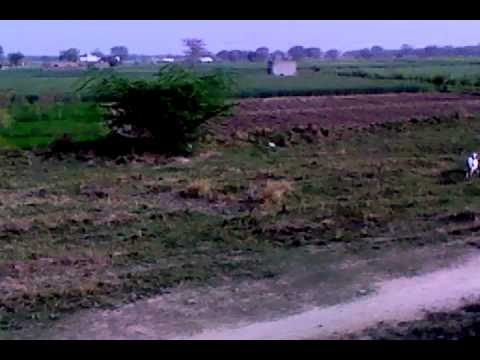 Journey from Akhtar Karnana to Lala Musa Gujrat Pakistan