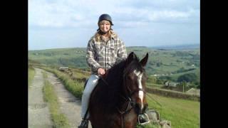 My Horse (Kid Rock - Born Free)
