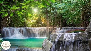 Music to Calm: Zen Meditation Music, Nature Sound (Wisdom of the Zen with Gentle Stream) ver. 2 ✌