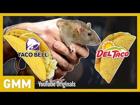 Which Fast Food Do Rats Prefer EXPERIMENT