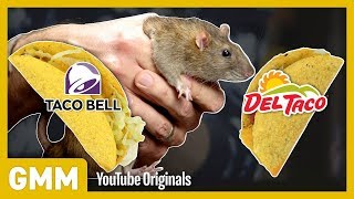 Which Fast Food Do Rats Prefer? (EXPERIMENT)