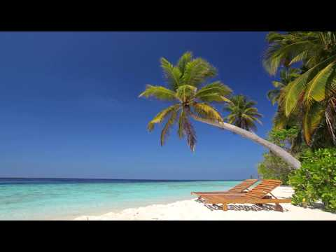 Xxx Mp4 ☀ Beach Ambience On Tropical Paradise Island Maldives ☀ Calm Ocean Sounds For Relaxing Sleeping 3gp Sex