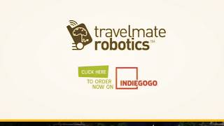 A Robot and Suitcase All-in-one: Travelmate