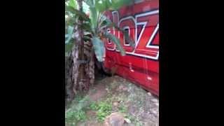 Acidente com ônibus da banda de forró Aveloz - Exclusivo