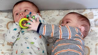 Twin Baby Boys Fighting Over Toy | 7 Months Update