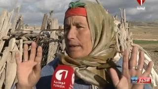 النشرة المسائية للأخبار ليوم 16 / 01 / 2017