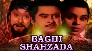 Hindi Movies 2017 Full Movie New # BAGHI SHAHZADA # Bollywood Movies 2017 Full Movies New
